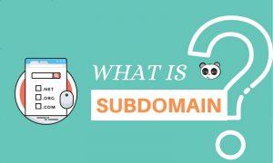 subdomain là gì 2